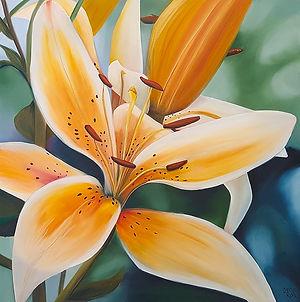 Orange Cream Lily