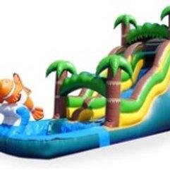 Tropical Nemo Water Slide