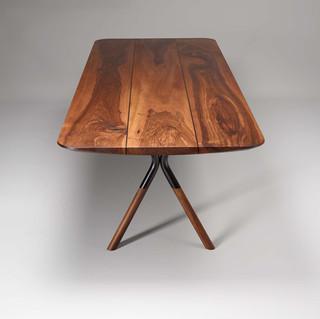 Xena Tischplatte und Profil.jpg