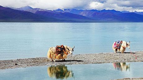 Namtso Lake Tibet Faces