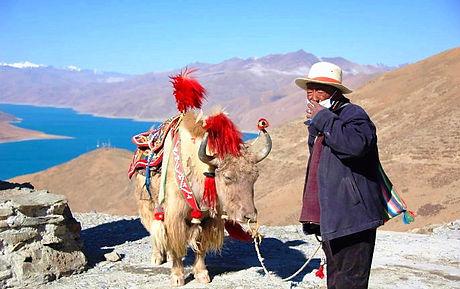 Tibetfaces Shigatse