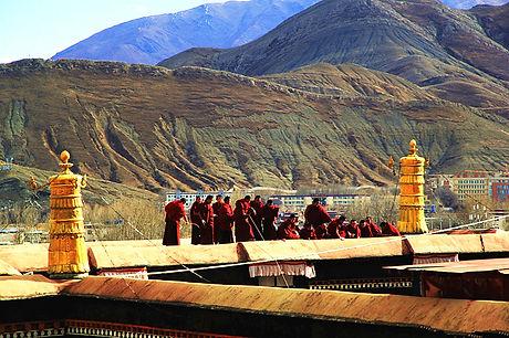 Tibetfaces Tashilhunpo Monastery