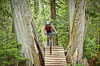 mountainbike2.jpg