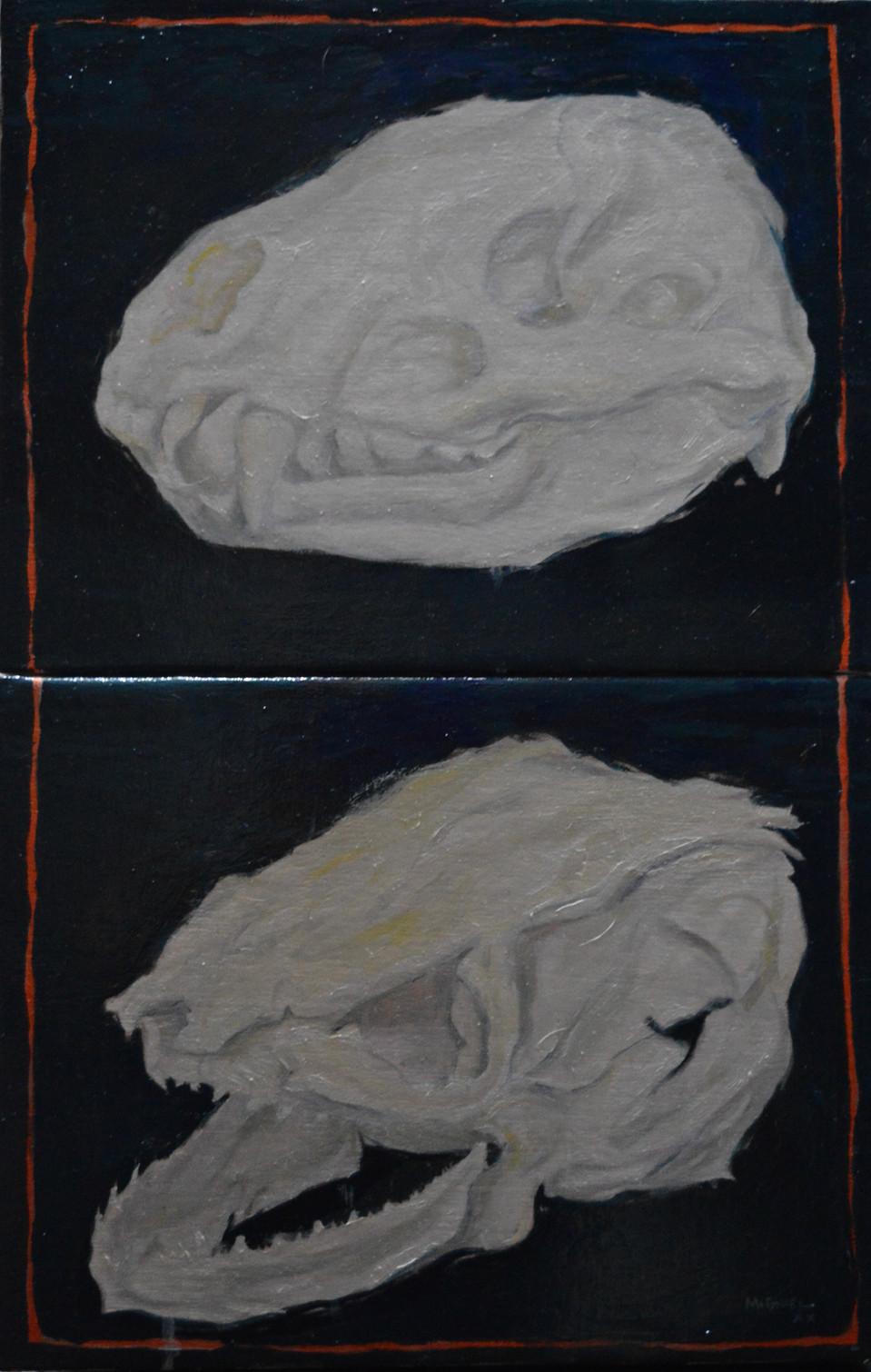 2 crânes