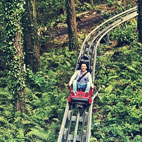 FFOREST COASTER AT ZIP WORLD IS A MUST...