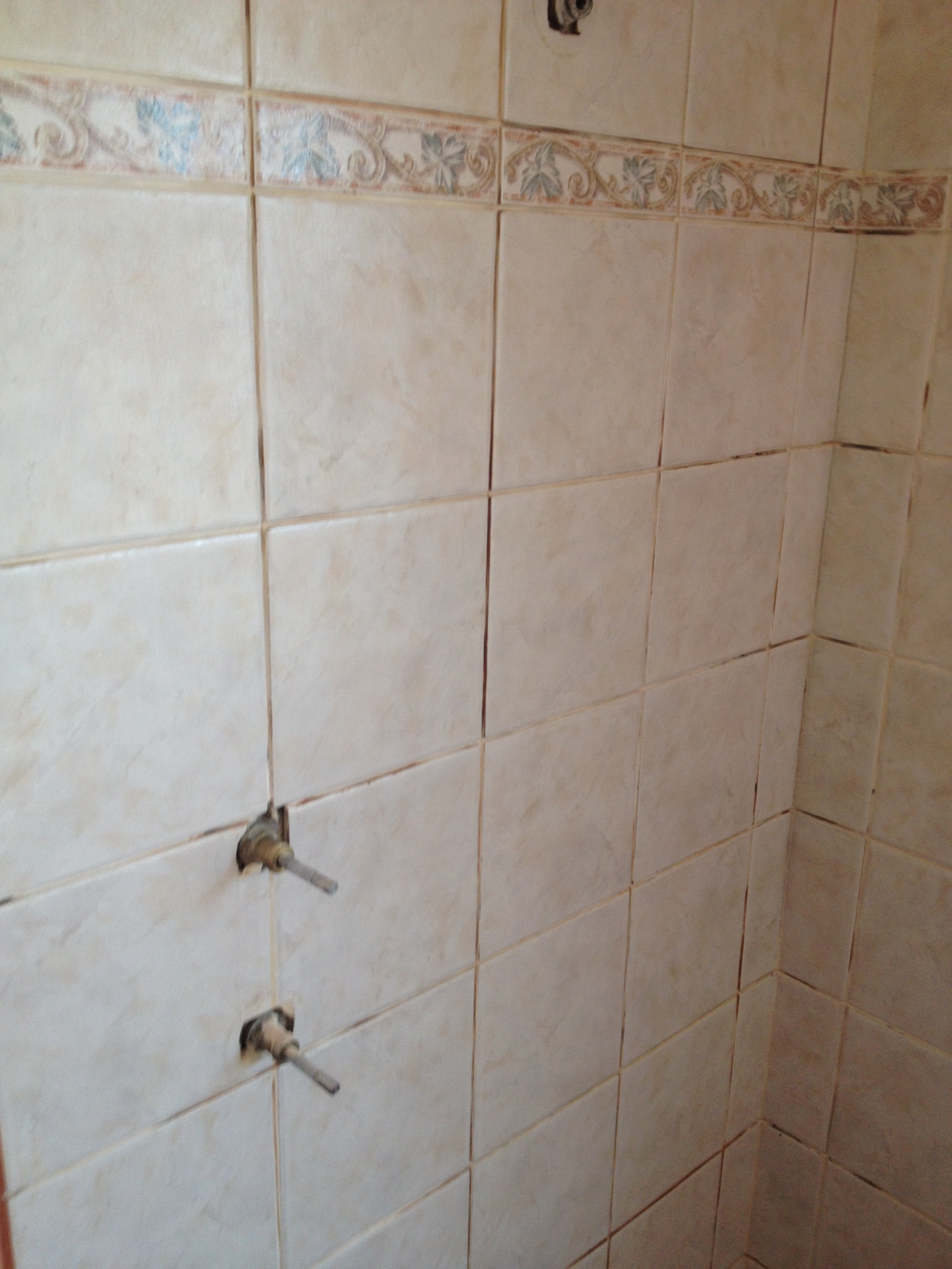 Awesome Leaking Grout, Shower Leaking, Wet Wall, Tile Grout, Epoxy Grout