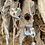 Thumbnail: Pearl  Drop Long Earrings -  MEDUSE
