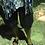 "Thumbnail: Leather sandals for Men ""HERO"""