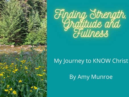 Amy's New Personal Blog