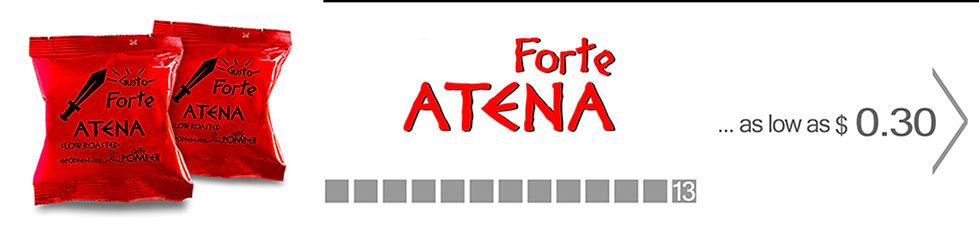 02-Atena-Forte3-1000.jpg