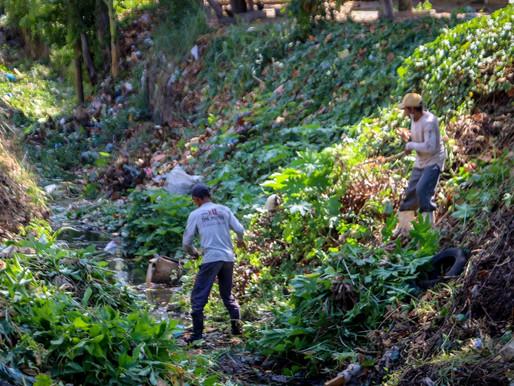 Prefeitura de Piripiri realiza segunda limpeza no trecho da linha férrea