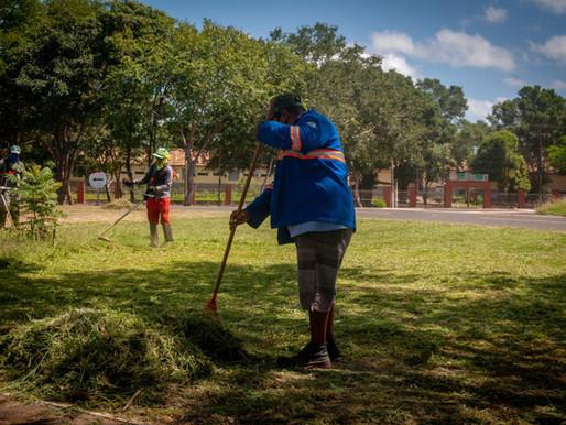 Semad trabalha na limpeza e podação de árvores das praças da Bandeira e da Uespi