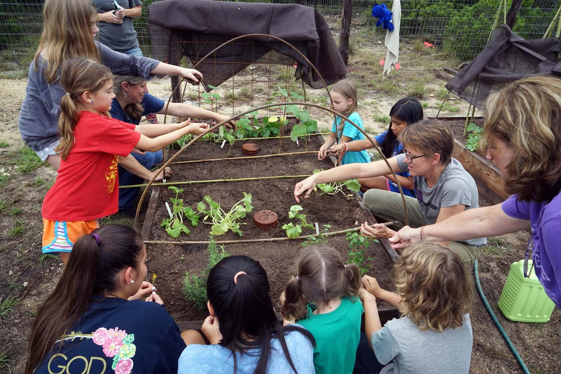 Gardening Camp August 2016