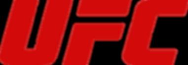 Fighters Source, Fighters Source League, Amateur MMA, MMA League, UFC