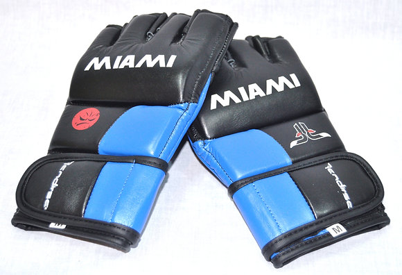 FSL  2015 -Miami, XFN -MMA Gloves