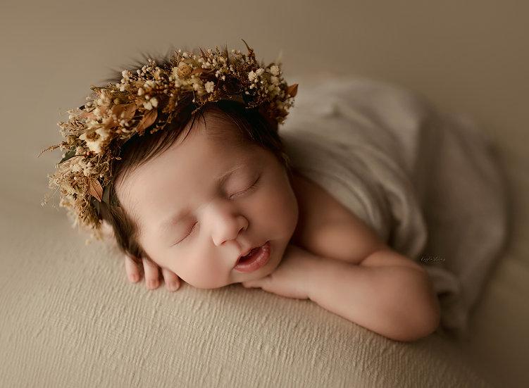 newborn collections