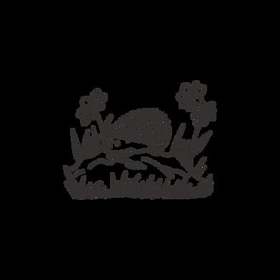 noun_Hedgehog_3698885.png