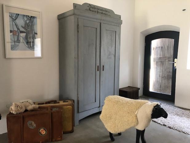 Schaf im Seminarraum