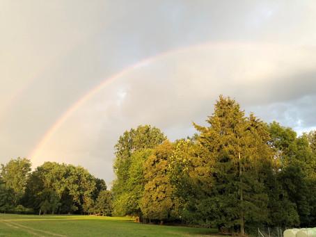 Sommerregen und ein Regenbogen