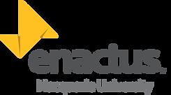Enactus MQ Logo Grey.png