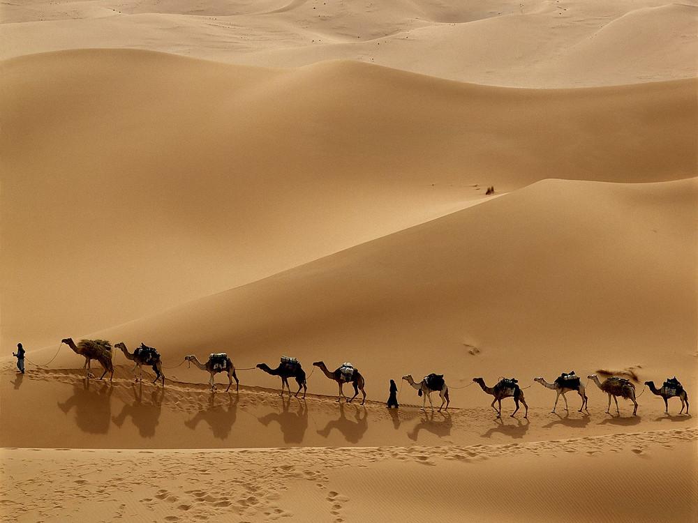 Caravana-en-el-desierto-de-Libia.jpg