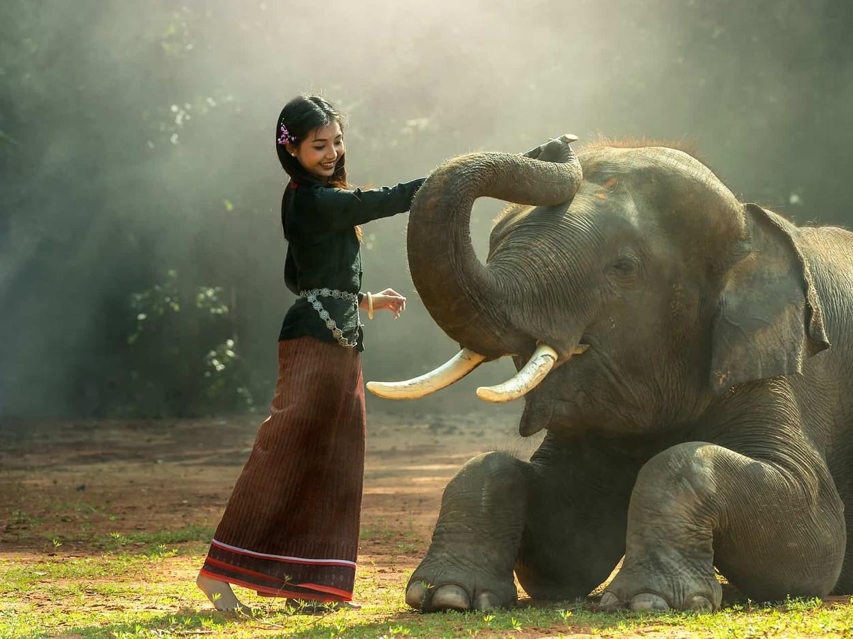 Ecodharma: El Advaita ante la Crisis
