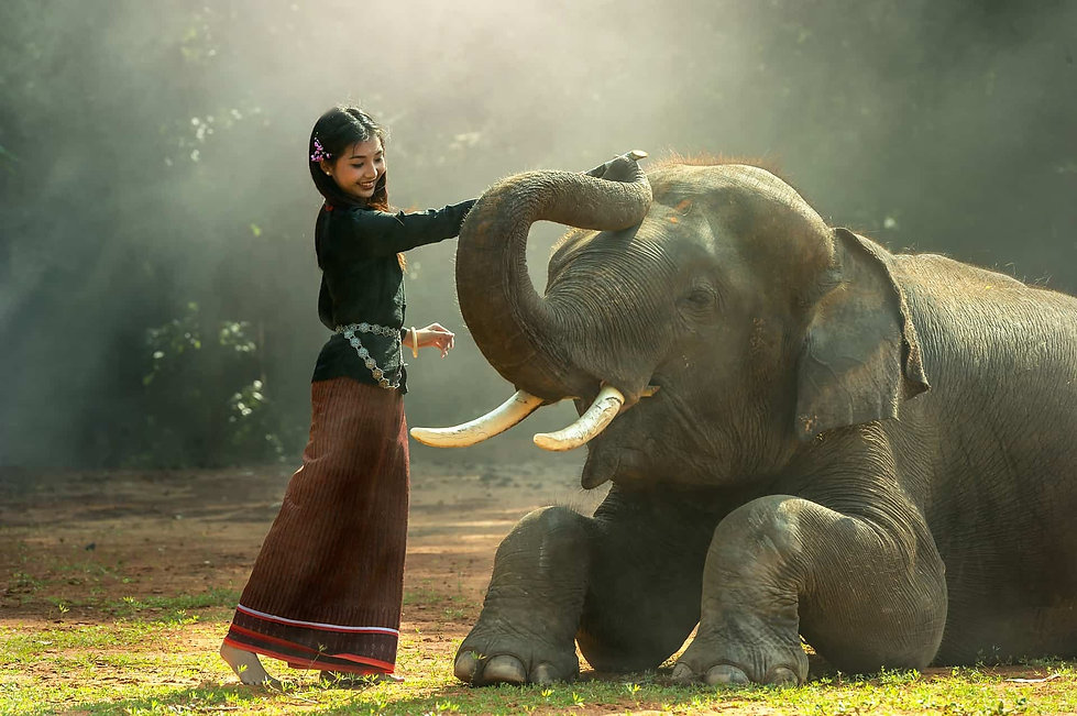 girl-elephant-metta-meditation.jpg