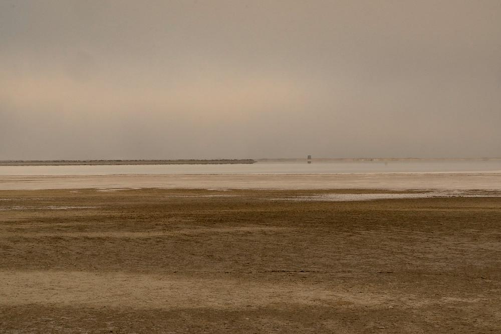 Camargue Abstract Landscape © Samantha Brown