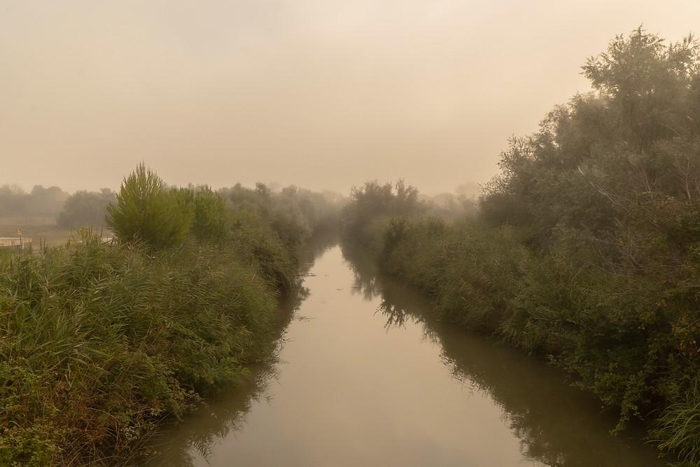 Carmague River © Samantha Brown