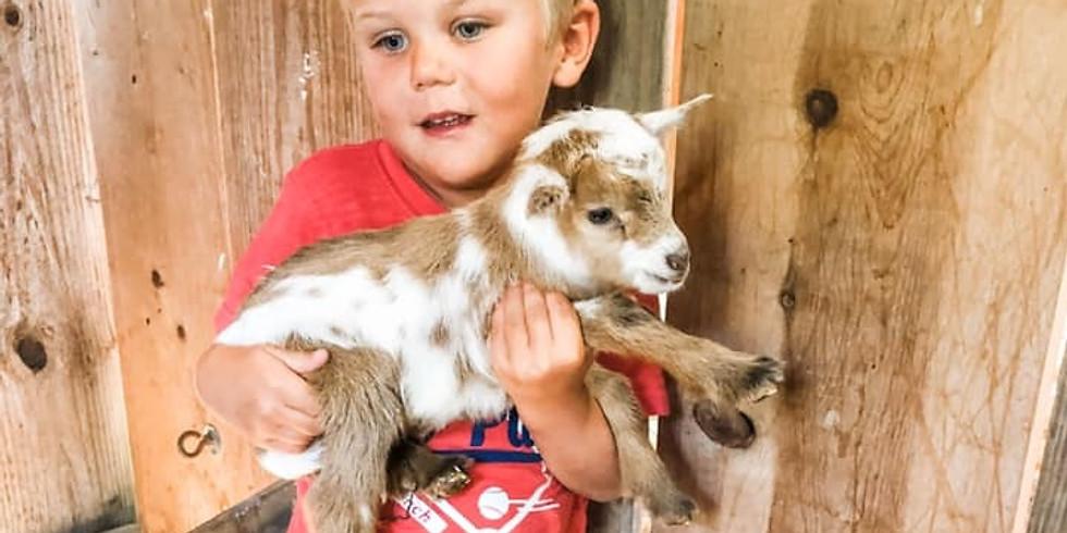 Goat Snuggles & Family Photos