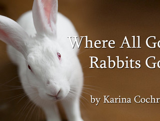 Tickets for 'Rabbits' now available at FaultLine