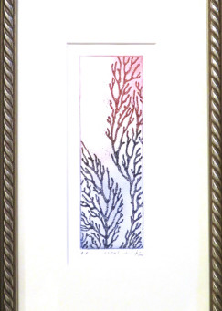 11.coral