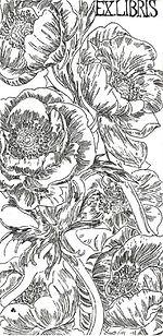 anemone20w.jpg