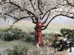Niti apple tree hug