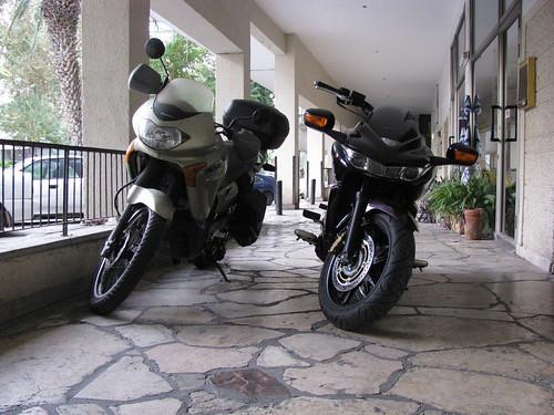 Two Hondas 1