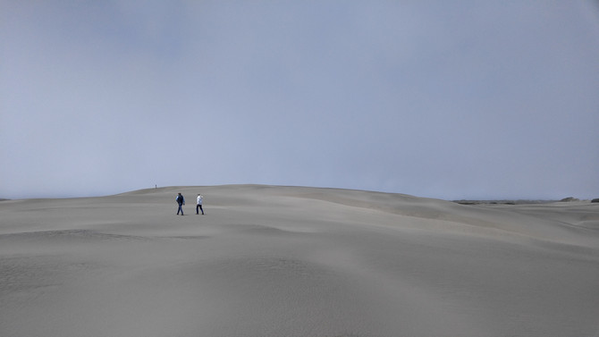 From the Bay to the Dunes