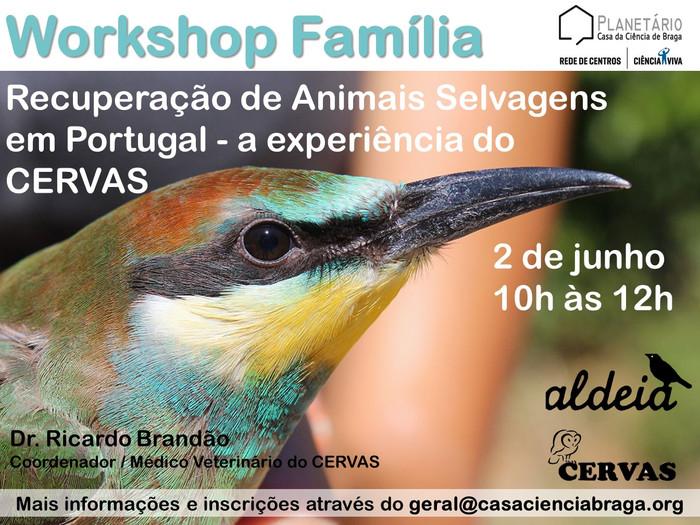 Workshop Família: Recuperação de animais selvagens em Portugal - a experiência do CERVAS