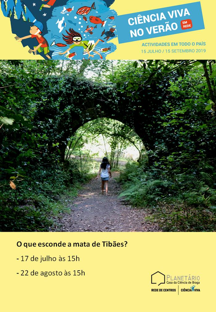 Ciência Viva no Verão em Rede 2019