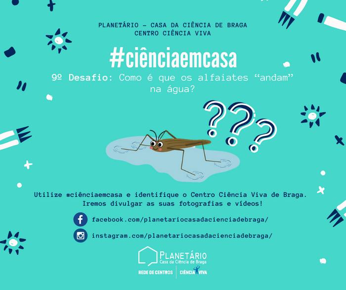 #ciênciaemcasa: 9º desafio