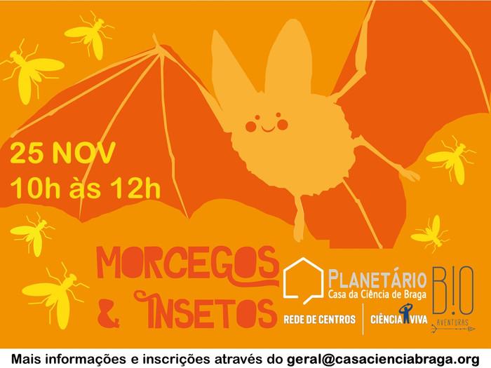 WORKSHOP FAMÍLIA: Morcegos e Insetos