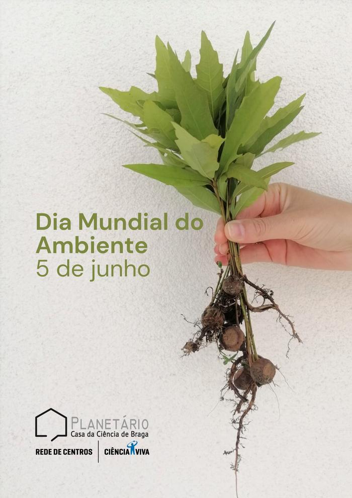 Dia Mundial do Ambiente- 5 de junho