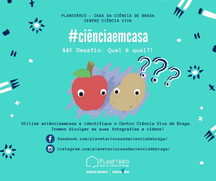 #ciênciaemcasa: 44º desafio