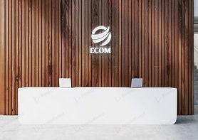 ecom2.JPG