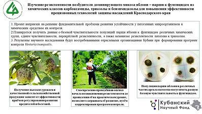 СКФНЦСВВ Насонов.jpg