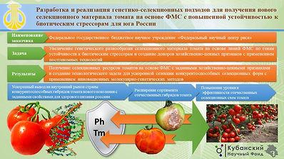 ФНЦ Риса Балясный.pptx.jpg