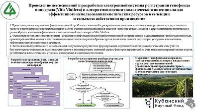 СКФНЦСВВ Ильина И.А..pptx.jpg
