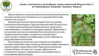 СНЦ РАН Рахмангулов.pptx.jpg