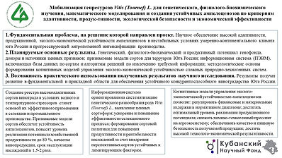 СКФНЦСВВ Петров.pptx.jpg