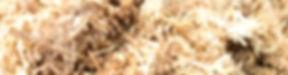 Mycopro texture_edited.jpg