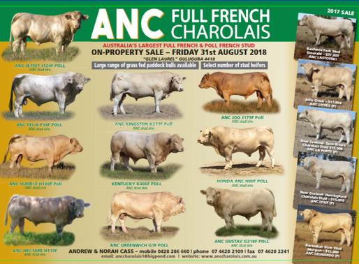 2018 ANC On Property Sale